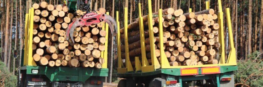 Відкрите проведення торгів деревиною